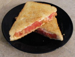 Grilled cheese with tomato sandwiches